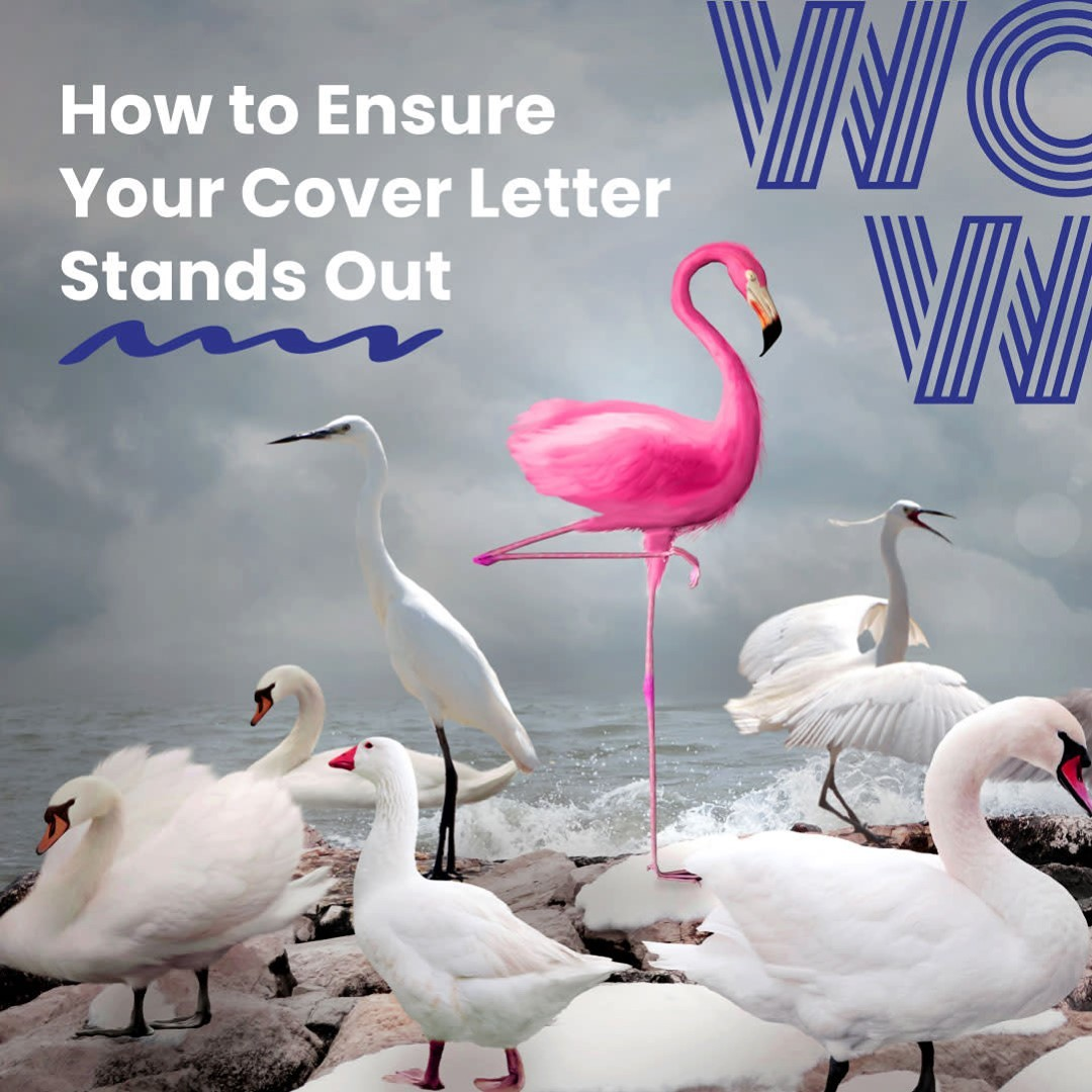 Think cover letter. Think compelling personal pitch. So many applicants overlook the enormous impact a good cover letter can have on getting offered the job you want, don't let this be you!Check out our latest blog for tips on writing a cover letter that will help you stand out from the competition and send you to the top of the shortlist.#DoWhatYouLove #RecruitmentHappy