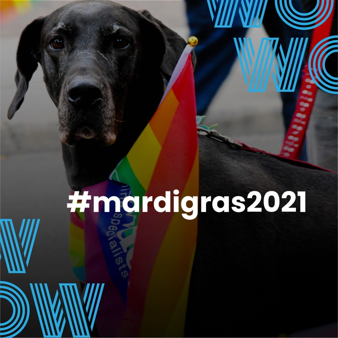 Over the next week, there are many great events happening as part of the 2021 Sydney Mardi Gras Festival. Get involved and join us in throwing your support behind our fantastically diverse culture! 🏳️https://www.mardigras.org.au/program #mardigras2021 #LGBTQI #everyoneisequal